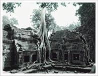 Cambodia Package Tours