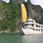 Calypso Cruiser Halong