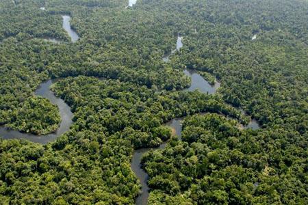 Cardamom Mountains in Cambodia