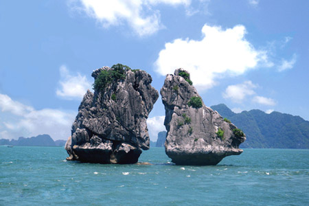 Cock Fighting islet Halong