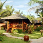Coco Beach Resort Phan Thiet - Garden