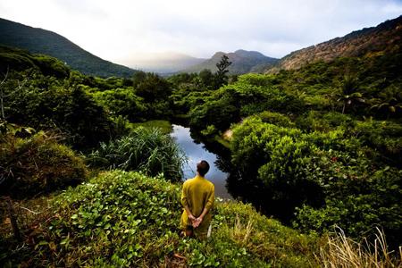 Con Dao National Park