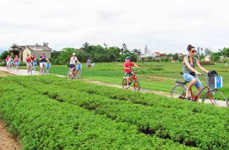 Untouched Vietnam by Bike – 19 Days