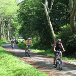 Cycling to Cuc Phuong National Park