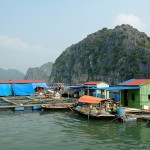Fishing Village Halong Bay
