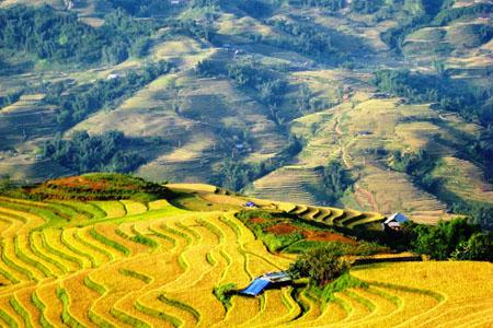 Giang Ta Chai Village - Sapa