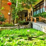 Hoian Pacific Hotel - Garden