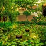 Life Heritage Resort Hoi An - Gardens