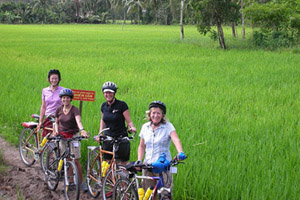 Softly Cycling Mekong Delta Tour