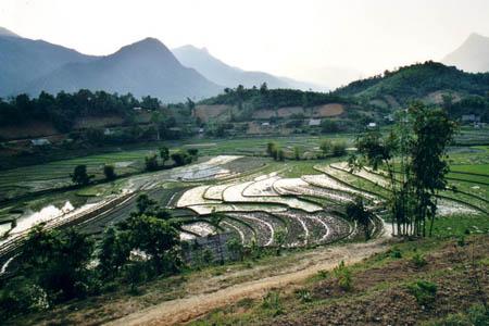 Thanh Phu Village