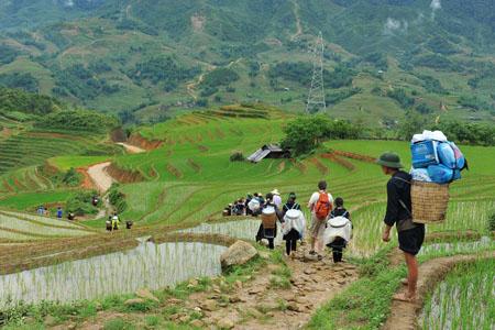 Trekking to Village in Sapa